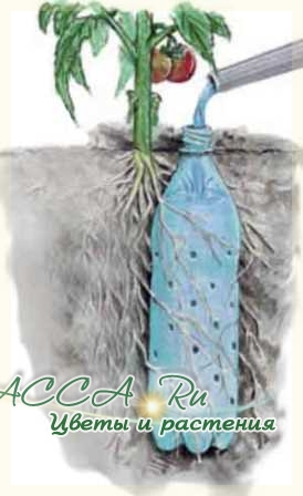 Поделки своими руками из пластиковых бутылок для