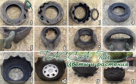 http://www.tacca.ru/images/M_images/flower/garden/tire_006.jpg
