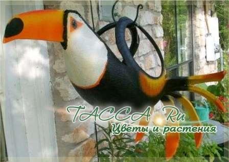http://www.tacca.ru/images/M_images/flower/garden/tire_009.jpg