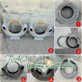http://www.tacca.ru/images/M_images/flower/garden/tire_014.jpg