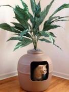 Домики-кашпо с растениями для кошек и собак.