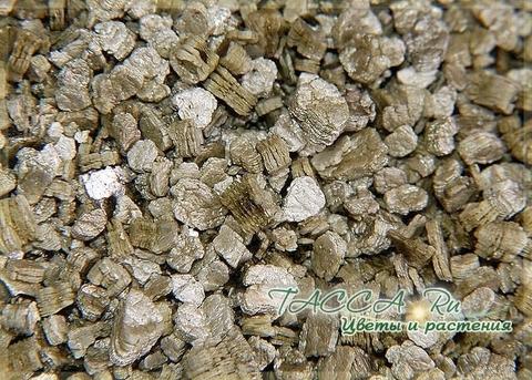 Перлит, вермикулит, древесный уголь, доломит для растений.