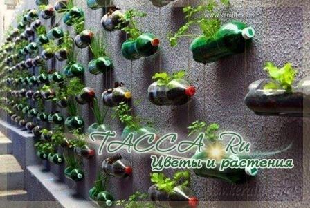 Поделки из пластиковых бутылок для сада своими руками.