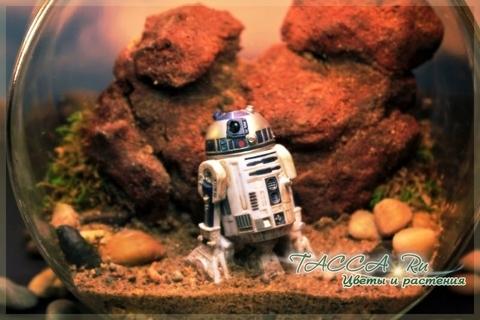 R2D2 на планете Татуин