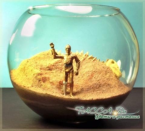 C3PO на планете Татуин
