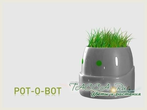 plantobot